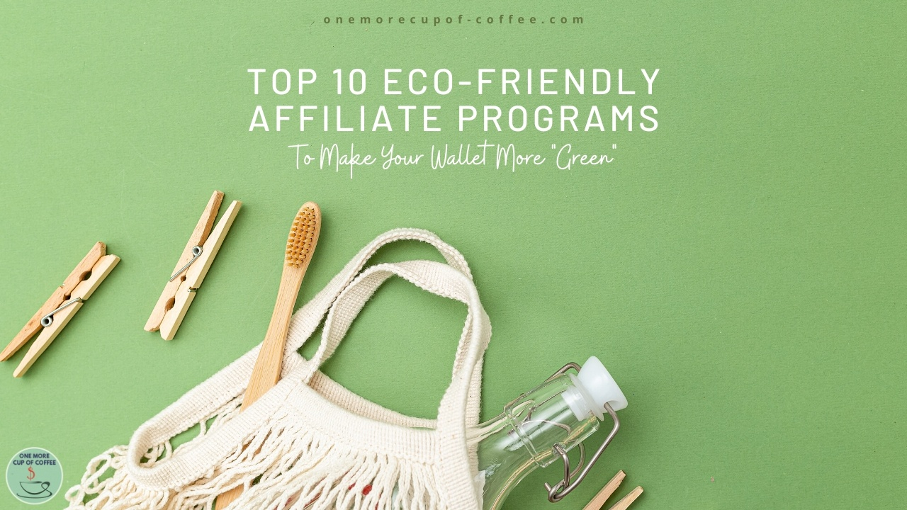 Top 10 Eco friendly Affiliate Programs To Make Your Wallet More Green - 9 Effective Affiliate Marketing Strategies to Try in 2021