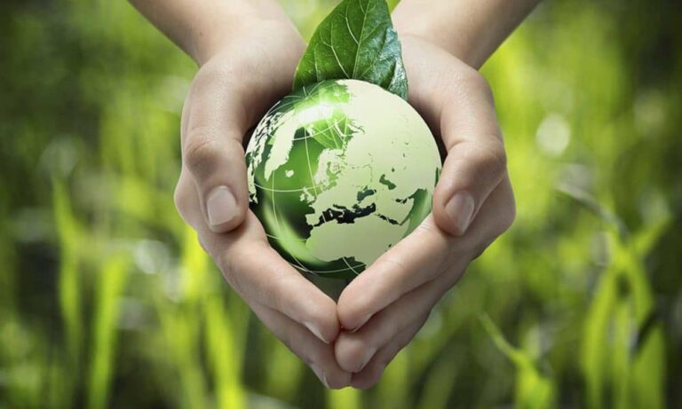 how to market your eco friendly business 1 768x461 - How to Market your Eco-Friendly Business - A Green Guide